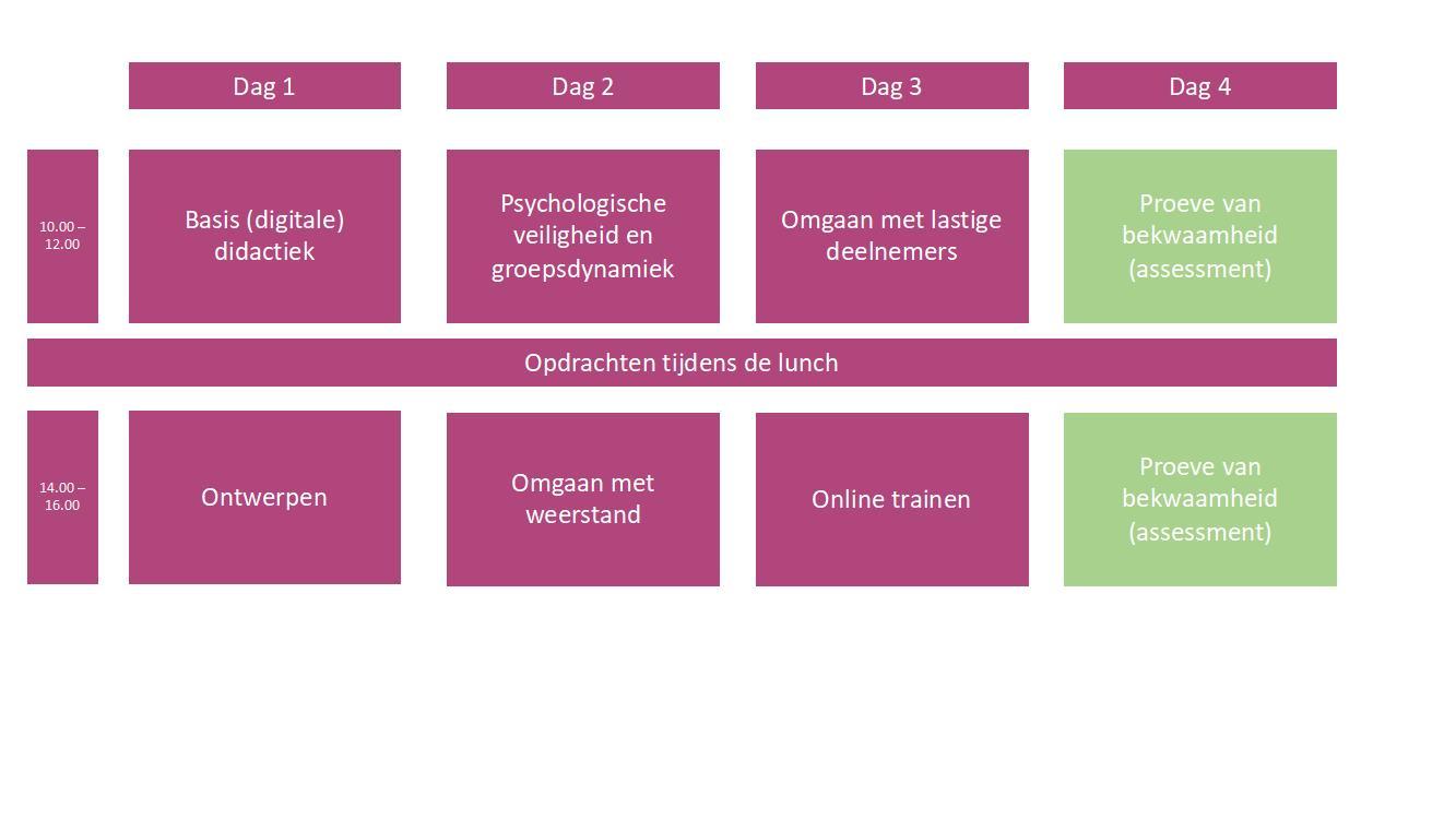 Programma 4 dagen Train de online trainer